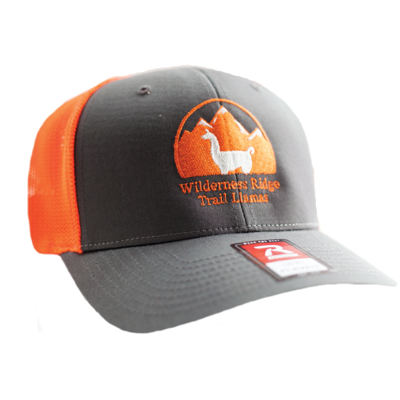 WRTL Charcoal/Orange 3 Trucker Hat