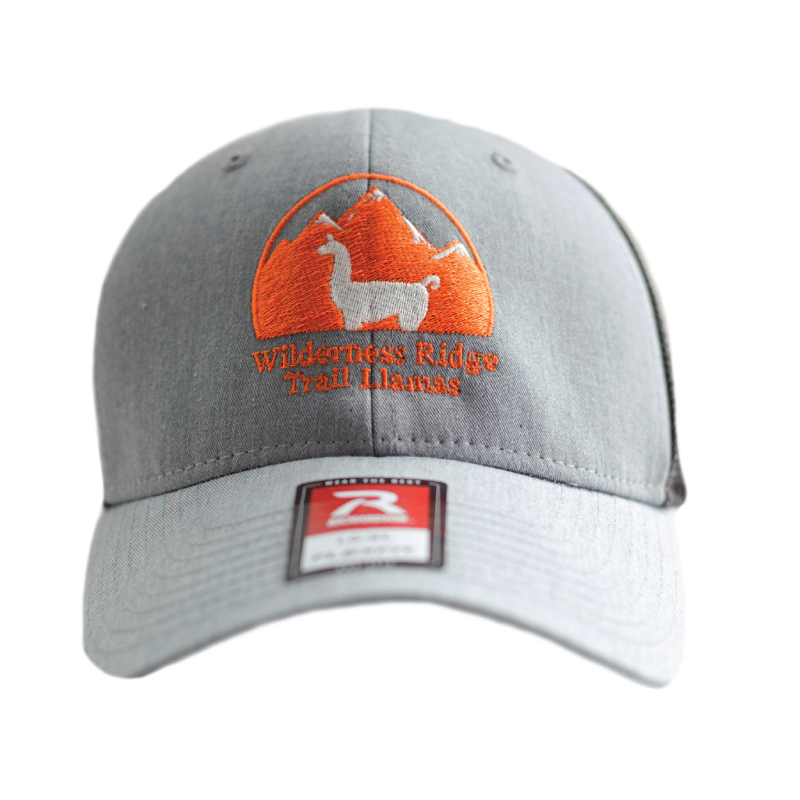 WRTL Grey Front Logo Trucker Hat