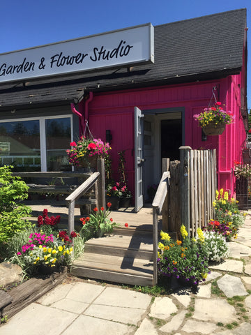 Outdoor spring annual planter at Fleuristic Flowers Gift Shop Guelph