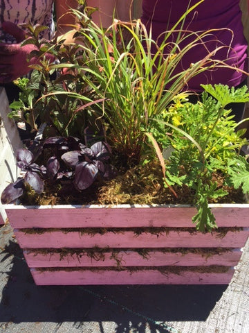 Herb crate planter at Fleuristic Flowers Gift Shop Guelph