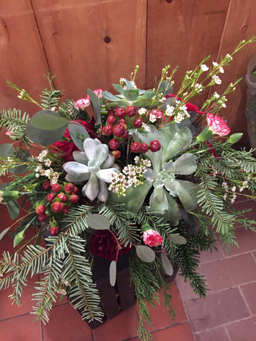 Holiday Succulent Centrepiece Thursday Dec.19th