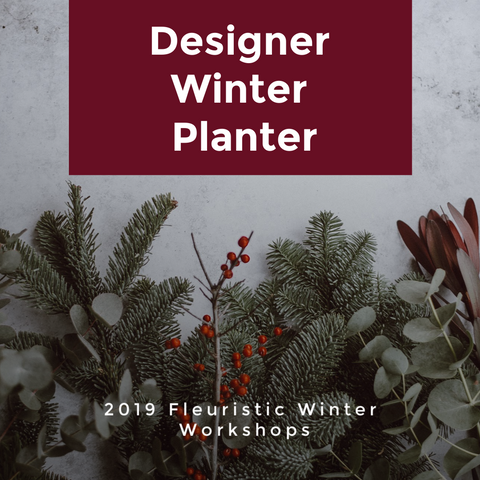 Designer Winter Porch Planter #2 Thursday. Nov.28th