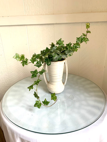 Ivy in Tall ceramic container