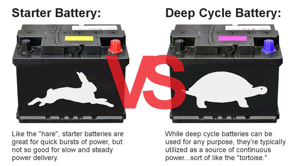 Battery rabbit vs turtle