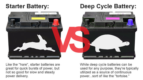 Battery rabbit vs turtle excerpt