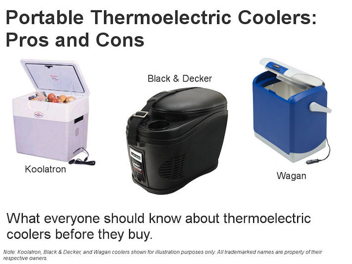 Portable 12v Thermoelectric Coolers Pros And Cons Ark