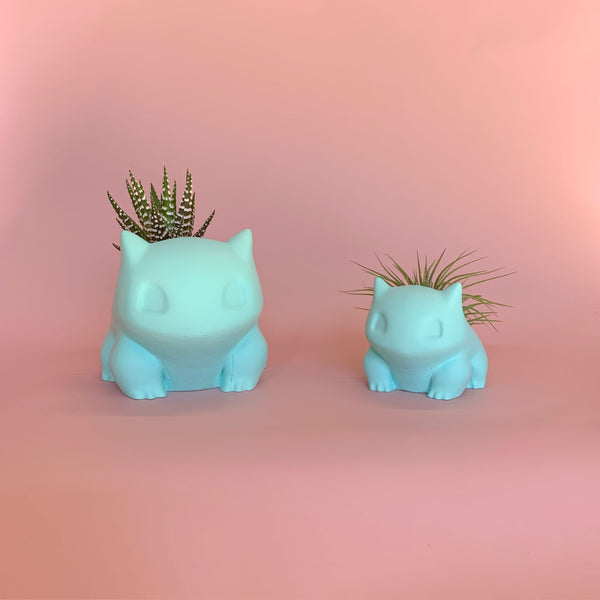 Bulbasaur Pot with Haworthia