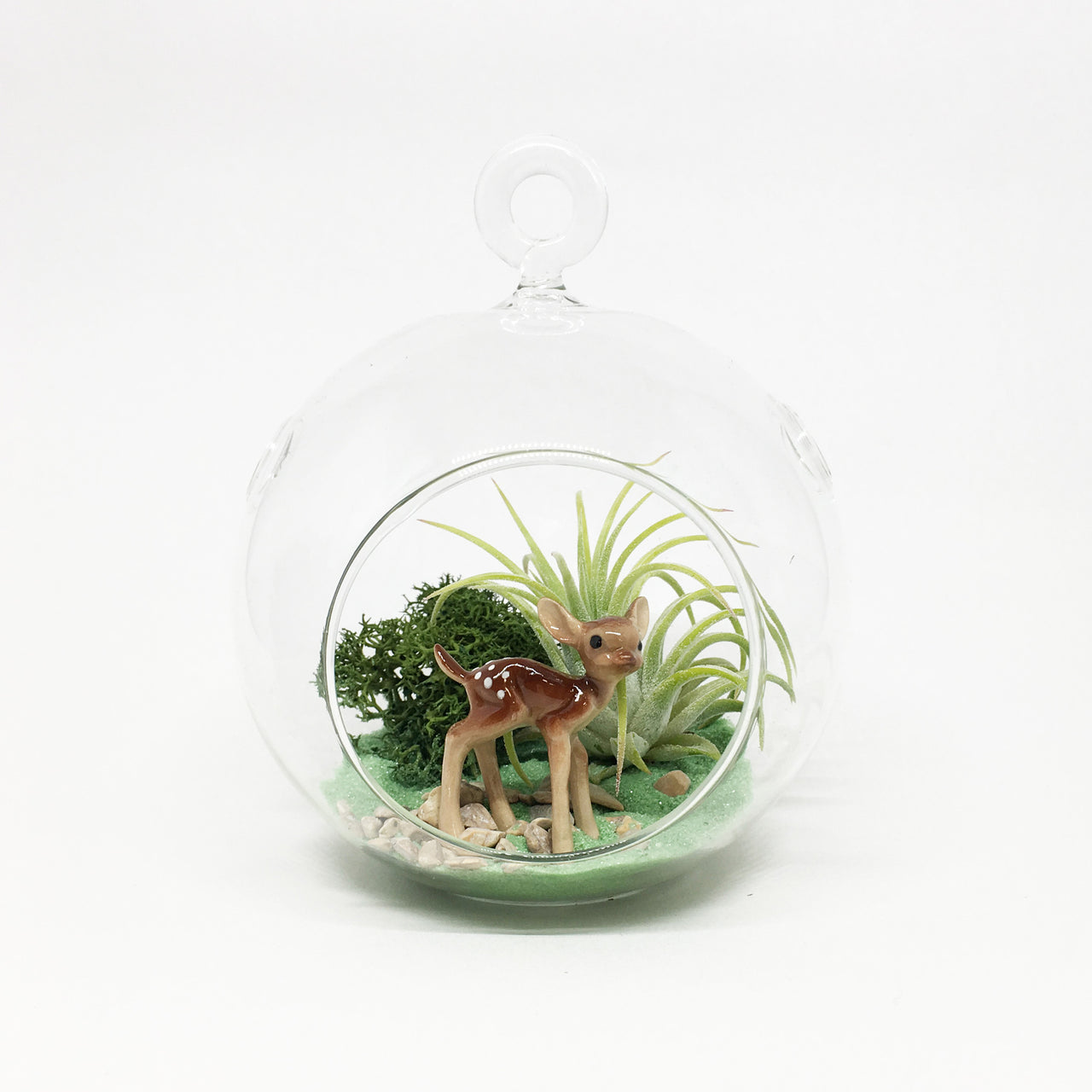 Deer Air Plant Terrarium Kit