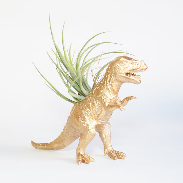 Dinosaur Air Planter - T. Rex