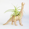 Dinosaur Air Planter - Brontosaurus