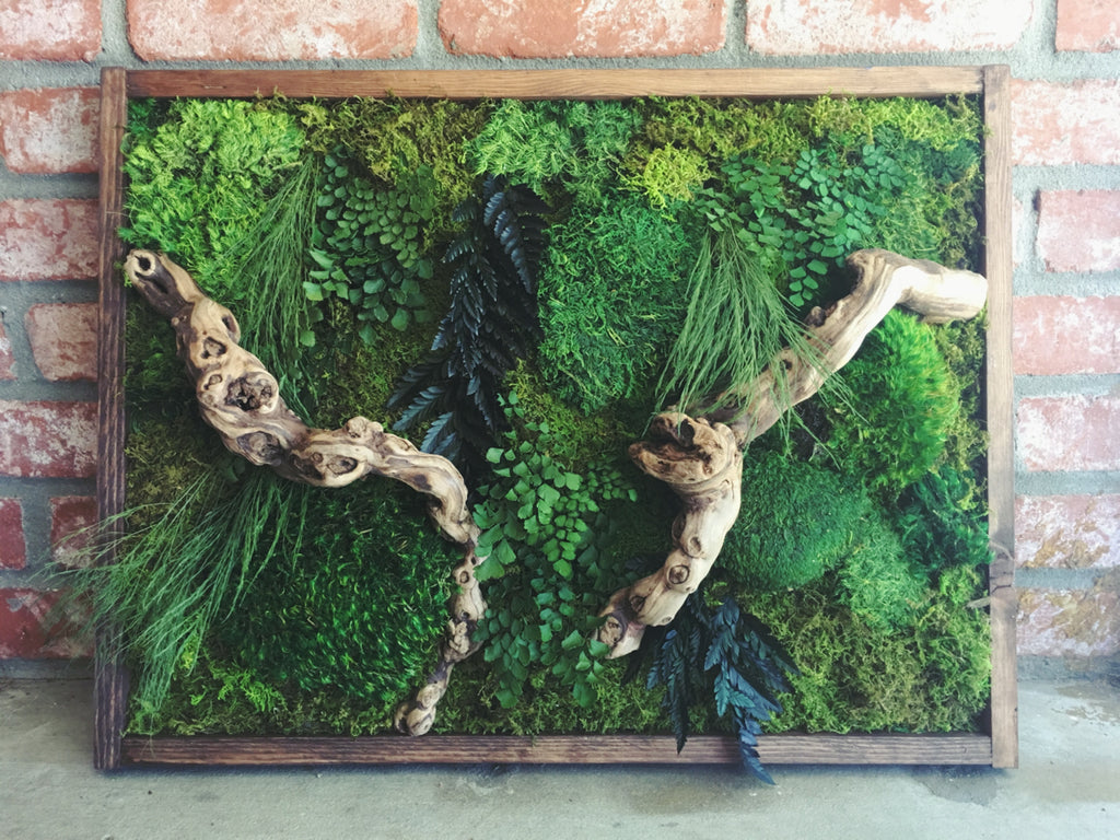 Preserved Moss and Fern Wall