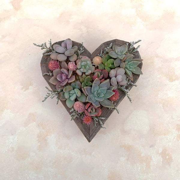 2/15/18 Heart Succulent Arrangement Workshop