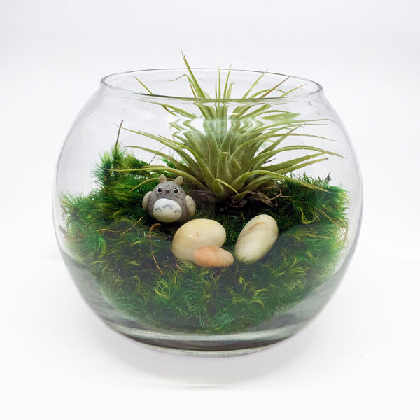 Tiny Spirit Creature Terrarium Kit