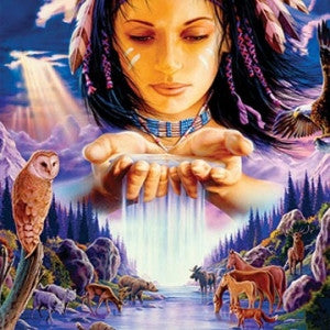 Shamanic Healing Meditation Journeying Workshop