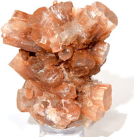 Large Aragonite Star Cluster