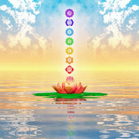 Chakra Balancing & Alignment Event Saturday, February 16, 2019 (Millburn, NJ)