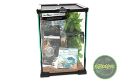 "REPTIZOO -12""x12""x18""-Crested Gecko Starter Kit"
