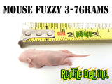 Mouse Fuzzy