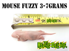Mouse - Fuzzy
