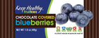 healthy snack bar fruitkies chocolate covered blueberries