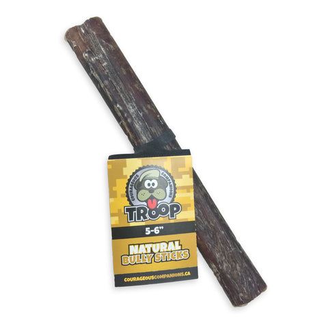 "5-6"" Bully Stick Regular"