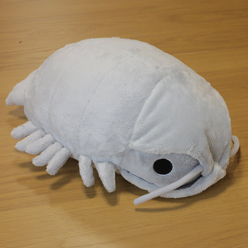 Deep Sea Creature Giant Isopod Plush Toy - Hamee.com