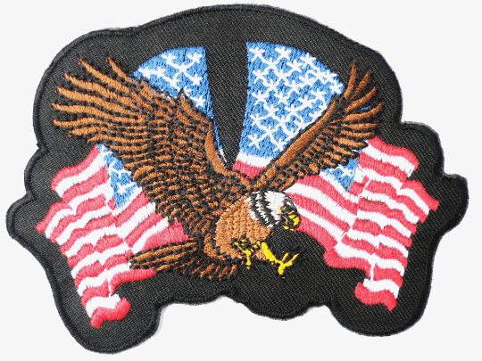 "USA Flag Freedom Eagle Biker Iron On Embroidered Patch 3.9""/10cm - A Patch E Store"