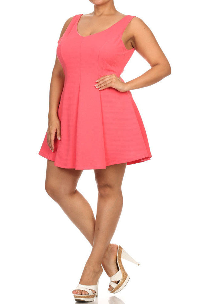 Plus Size V Neck Princess Pink Skater Dress