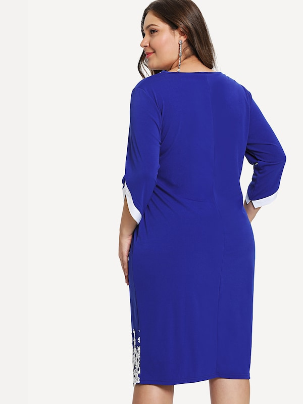 Plus Size Lace Panel Colorblock Neck Dress
