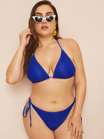 Plus Size Net Overlay Triangle Top With Tie Side Bikini