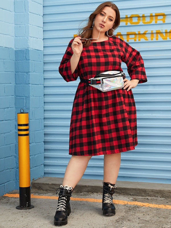 Plus Size Raglan Sleeve Gingham Smock Dress