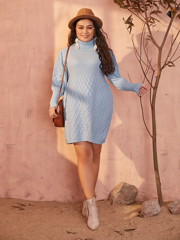 Plus Size Gigot Sleeve Turtle Neck Sweater Dress
