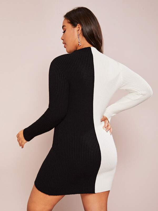 Plus Size Two Tone Ribbed Knit Bodycon Sweater Top Dress