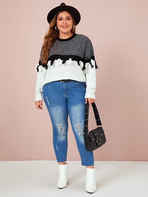 Plus Size Tassel Trim Colorblock Sweater Top