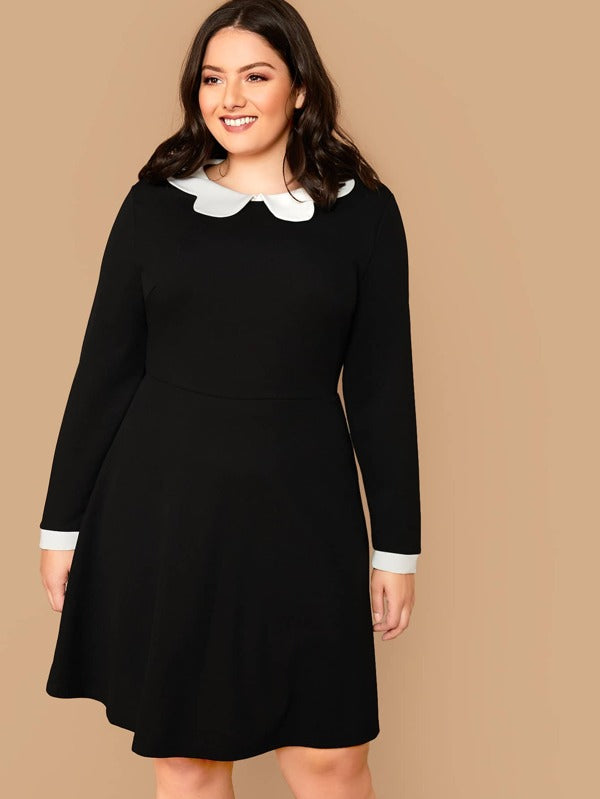 Plus Size Contrast Peter Pan Collar A-Line Dress