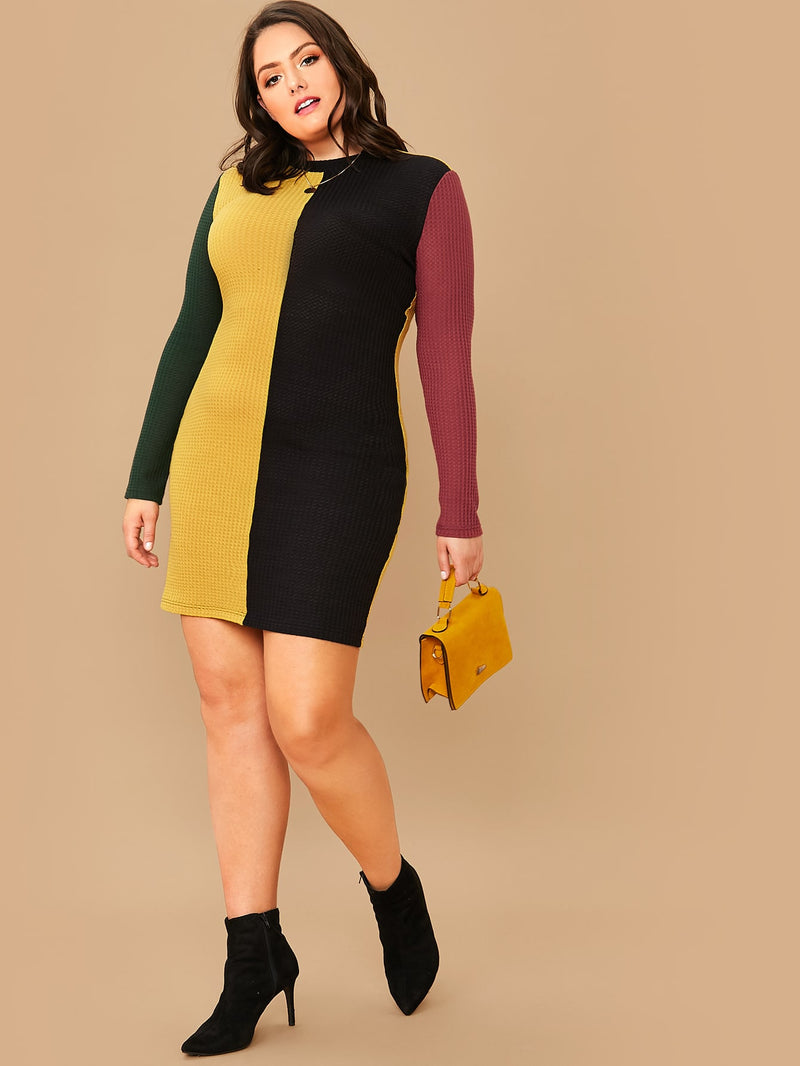 Plus Size Waffle Knit Colorblock Fitted Dress