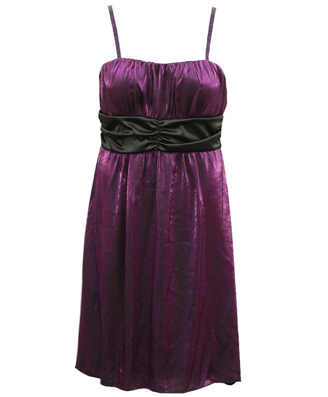 Plus Size Elegant Tube Purple Dress