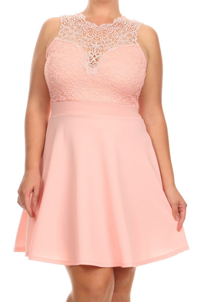 Plus Size Beautiful See Through Lace Skater Dress