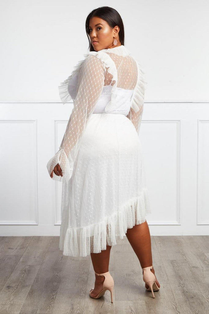 Plus Size Designer Ruffle Sheer Dress