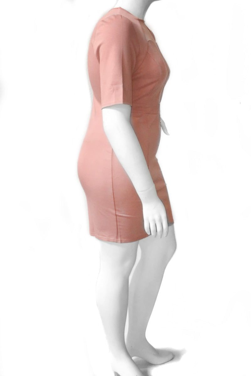 Plus Size Designer Mesh Panel Chic Dress Pink