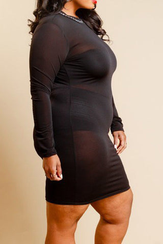 Plus Size Goddess In Rhinestones Mesh Tube Dress
