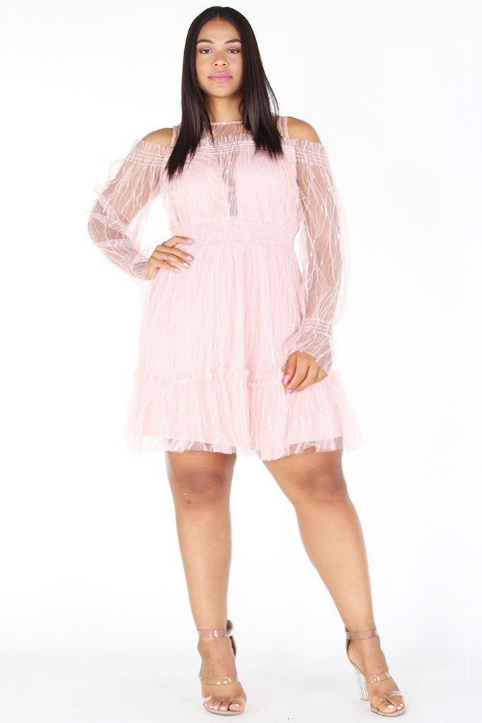 Plus Size Sheer Mesh Fit and Flare Crew Neck Dress