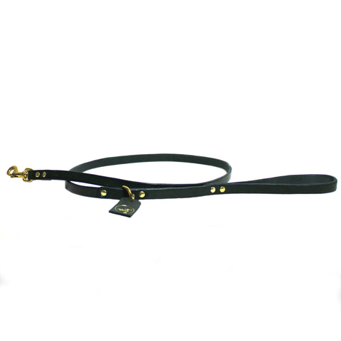 THE PARADISO LEASH