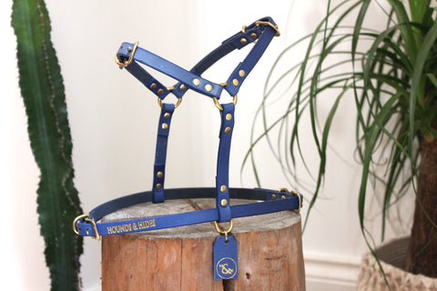 THE COMO HARNESS