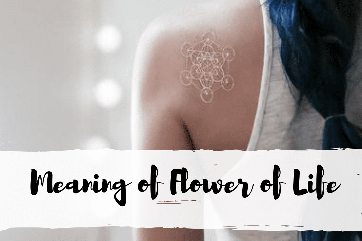 The Meaning Of Flower Of Life Explained One Tribe Apparel It is impossible to do so alone. the meaning of flower of life explained