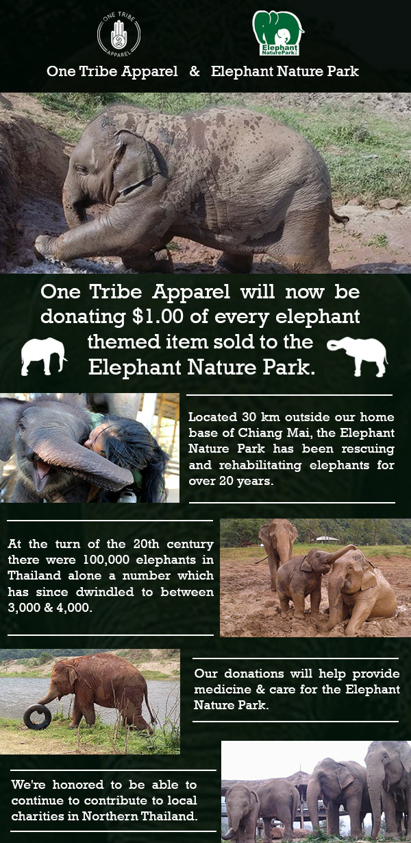 Saving & Rescuing Elephants at Elephant Nature Park