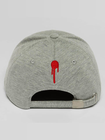 Who Shot Ya? / Snapback Cap Lucid Style in grey