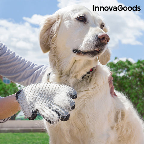 InnovaGoods Pet Brush & Massage Glove-Universal Store London™