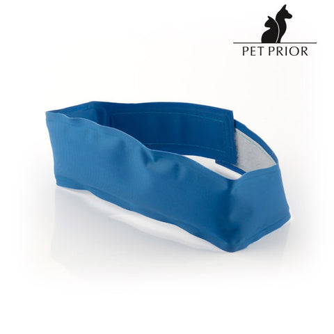 Pet Prior Cooling Dog Collar-Universal Store London™
