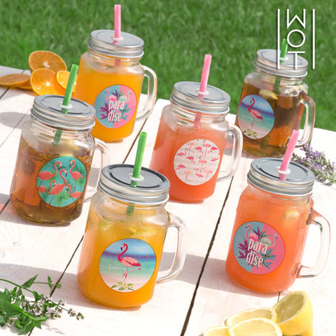Image of Wagon Trend Flamingo Jars with Lids and Straws (pack of 6)-Universal Store London™